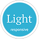 Light - Responsive Mobile Retina Ready Template - ThemeForest Item for Sale