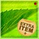 Green Leaf Background - GraphicRiver Item for Sale
