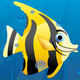 Crazy Fishes - GraphicRiver Item for Sale