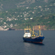 Cargo Ship in Landscape - VideoHive Item for Sale