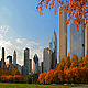 Chicago Autumn - VideoHive Item for Sale