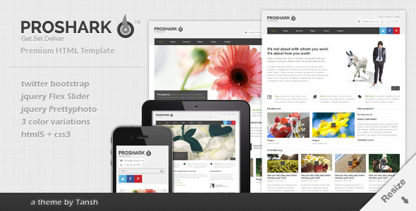 Proshark Responsive Corporate HTML Template
