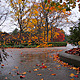 Autumn Rain - VideoHive Item for Sale