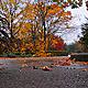 Autumn Rain 2 - VideoHive Item for Sale