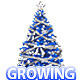 Growing Chrismas Tree - VideoHive Item for Sale