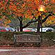 Autumn Rain 4 - VideoHive Item for Sale
