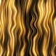 Gold Loop Lines Background - VideoHive Item for Sale