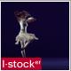 Modern Ballet 22 - VideoHive Item for Sale