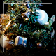 Rotating Toy Fir Tree - VideoHive Item for Sale