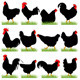 12 Roosters and Hans Silhouettes Set - GraphicRiver Item for Sale