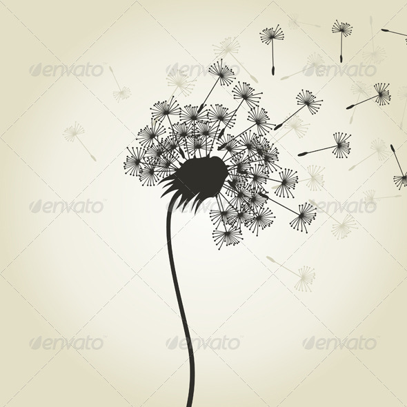 Dandelion And Plant Graphics Designs Templates