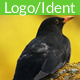 Deep Smooth Logo 1 - AudioJungle Item for Sale