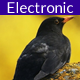 Electro Dub - AudioJungle Item for Sale