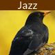Smokin Funky Jazz Bass - AudioJungle Item for Sale