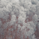 Aerial Of Ice Frozen Forest In Mountains - VideoHive Item for Sale
