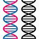 Seamless DNA Symbol - GraphicRiver Item for Sale