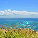 Grass And Ocean View - VideoHive Item for Sale