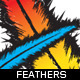 Coloured Feathers with Silhouette  - GraphicRiver Item for Sale