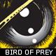 Bird of Prey V1 - GraphicRiver Item for Sale