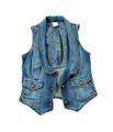 Blue denim vest with flowers lining and bronze ornated buttons - PhotoDune Item for Sale