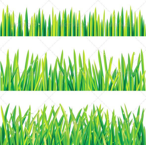 photo about Grass Printable known as Gr Yard Vectors in opposition to GraphicRiver