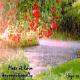 Spring Rain - AudioJungle Item for Sale