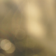 Bokeh Background (3-pack) - VideoHive Item for Sale
