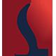 Sectovia - GraphicRiver Item for Sale