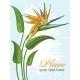 Vintage Floral Background - GraphicRiver Item for Sale