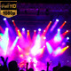 Concert Crowd 3 - VideoHive Item for Sale