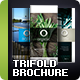 Trifold Brochure Vol. 5 - GraphicRiver Item for Sale
