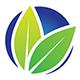 Naturally Life Logo - GraphicRiver Item for Sale