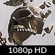 Human Skull Shatter - VideoHive Item for Sale