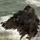 Cornwall Rocks Rough Sea 2 - VideoHive Item for Sale