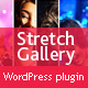 Stretch Gallery Accordion Slider - Wordpress Plugin - CodeCanyon Item for Sale
