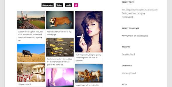 Responsive Pinterest Grid Gallery WordPress Plugin Download
