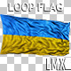 Ukrainian Loop Flag - VideoHive Item for Sale