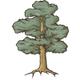 Oak Tree Sketch - GraphicRiver Item for Sale
