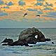 Seal Rocks - VideoHive Item for Sale