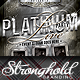 Download Platinum Live Party Flyer Template from GraphicRiver