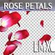 Rose Petals Rain Pack - VideoHive Item for Sale