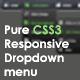 Pure CSS3 Responsive Drop down Menu - CodeCanyon Item for Sale