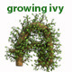 Growing Tree With Wind Blow Alphabet - VideoHive Item for Sale