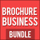 Business Brochure Bundle 1 - GraphicRiver Item for Sale
