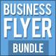 Business Flyer Bundle 1 - GraphicRiver Item for Sale