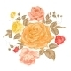 Rose Bud over White. - GraphicRiver Item for Sale