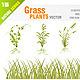 Grass Plant Set - GraphicRiver Item for Sale