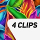 Colorful Flourish - VideoHive Item for Sale