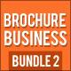 Business Brochure Bundle 2 - GraphicRiver Item for Sale