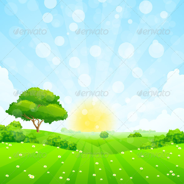 Green Landscape with Tree